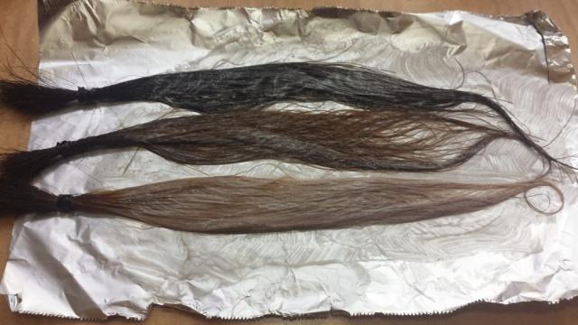 ベージュで染めた直後の毛束3本の写真