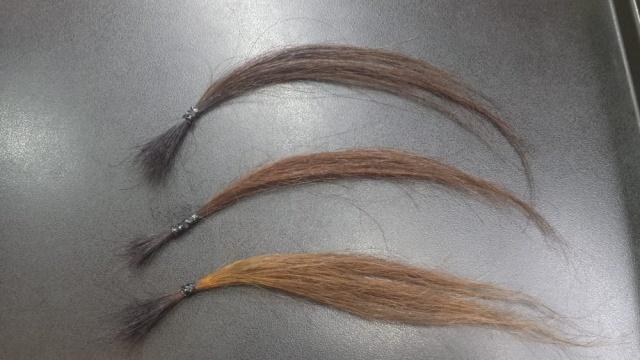 ベージュヘアカラーで染めた毛束3本の写真