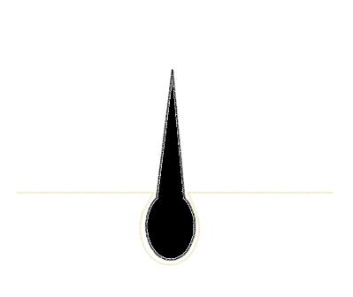 頭皮から生えている髪の毛と毛根のイラスト