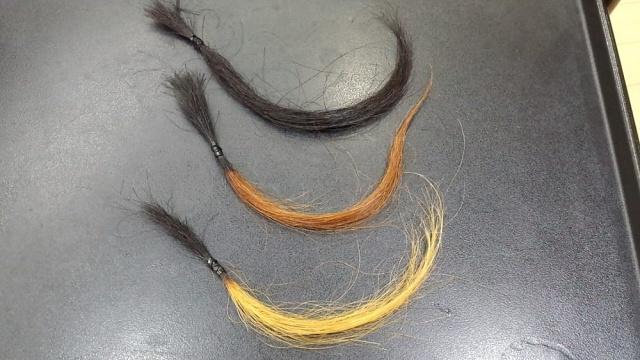 地毛、ブリーチ1回、ブリーチ3回の毛束の写真
