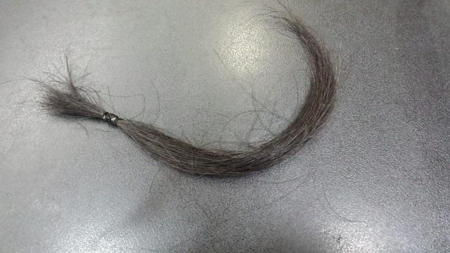 地毛の染める前の写真