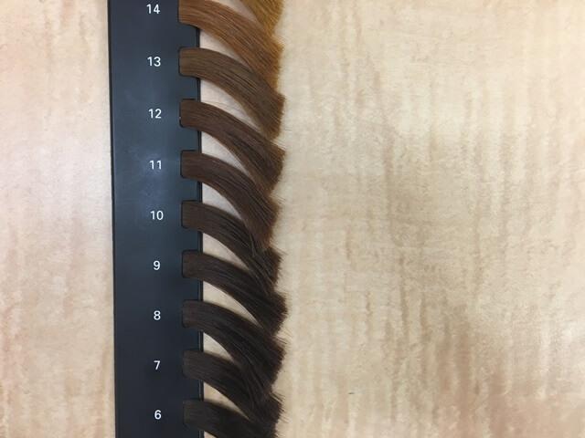 髪の毛の明るさレベル表
