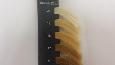 カラーレベル表のサンプル写真