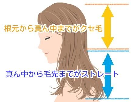 クセ毛の説明をしたイラスト画像