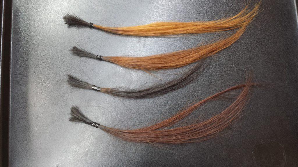 段階別に明るくした髪の毛の毛束の写真