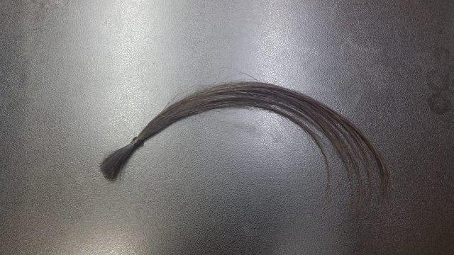 黒髪にアッシュグレーを染めた黒髪にアッシュグレーを染めた黒背景の写真