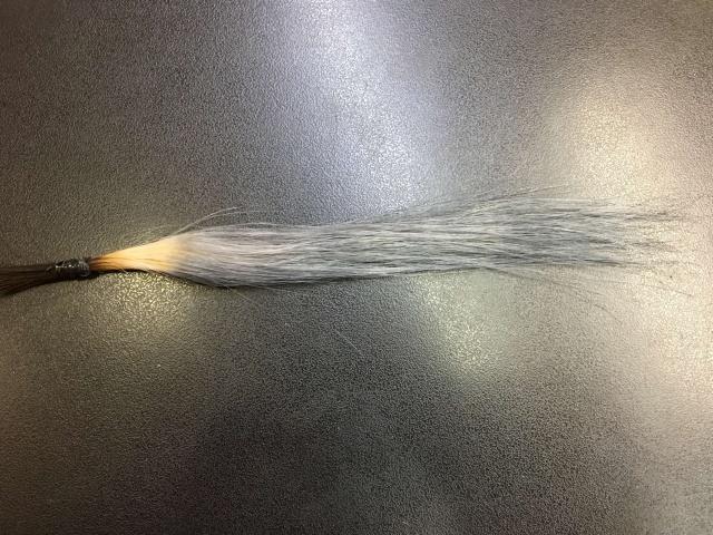 アッシュグレーになった毛束の写真