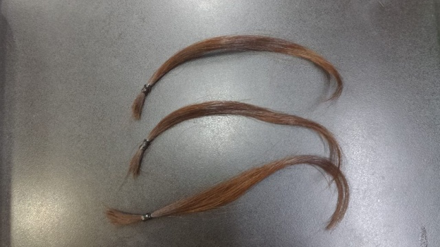 実験に使う3本の髪の毛黒背景の写真