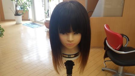 乾かした後の髪の毛の写真