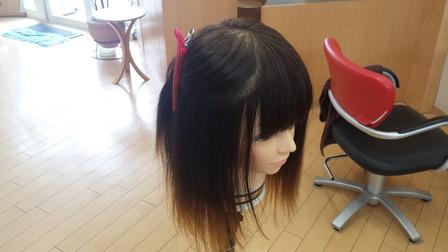 髪の毛をクリップで分け取った写真