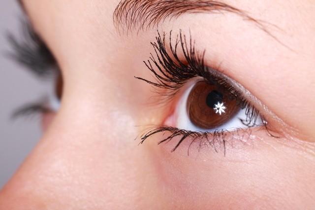 女性の眉毛と目元の写真