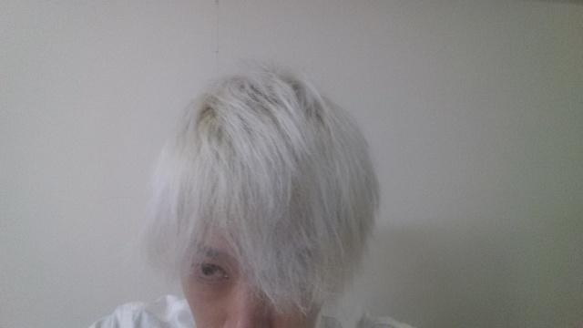 ホワイトブリーチして初日の髪の毛の色
