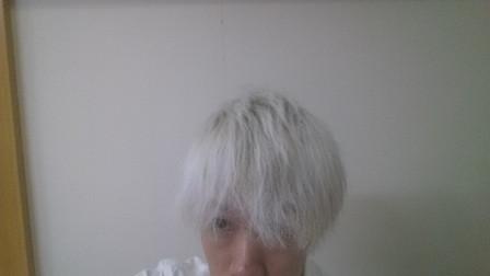 ホワイトブリーチした直後の髪の毛の写真 正面