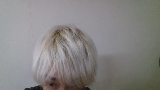 ホワイトブリーチして2日目の髪の毛の色