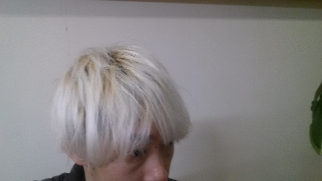 ホワイトブリーチして2日目の髪の毛の色 横