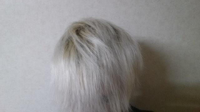 ホワイトブリーチして5日目の色落ちの写真