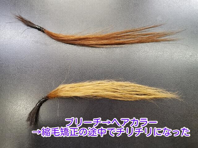 キレイな髪と、色落ちしてチリチリになった髪の毛