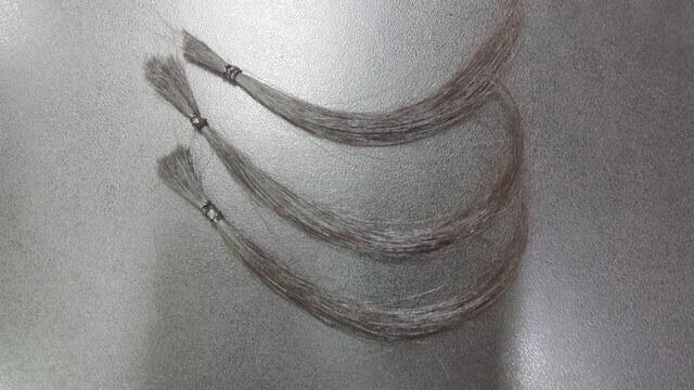 褪色実験に使う毛束の写真