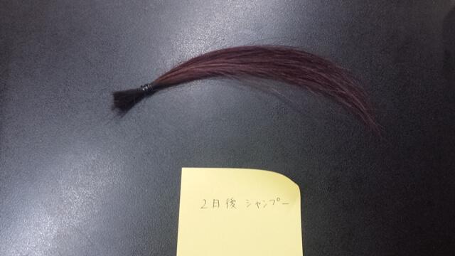 カラーして2日後に洗った髪の毛の写真