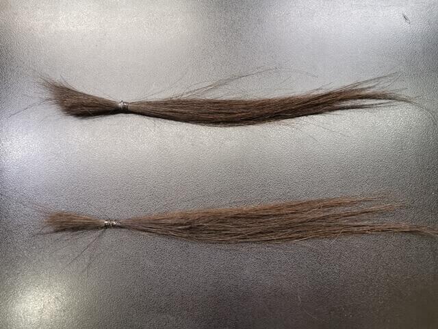 縮毛矯正とカラーをする前の髪