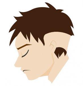 蛇行型円形脱毛症の症状の画像