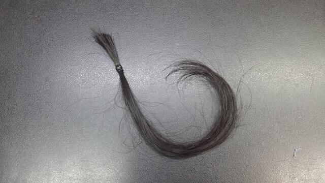パーマ翌日にシャンプーした髪の毛ドライ後
