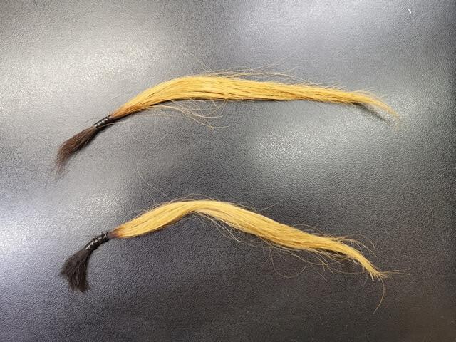 ブリーチしてある髪