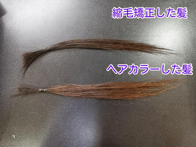 縮毛矯正とカラーをした髪の毛
