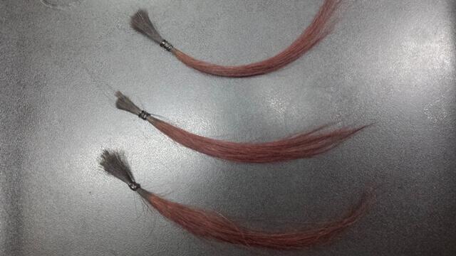 ヘアカラー後にシャンプーした髪の毛比較の写真