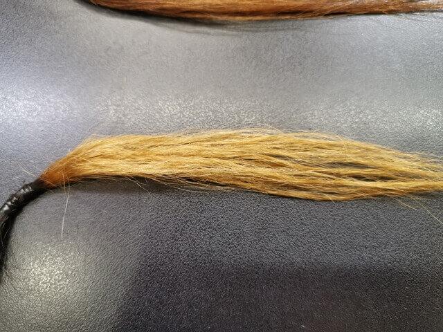 チリチリになった髪のアップ