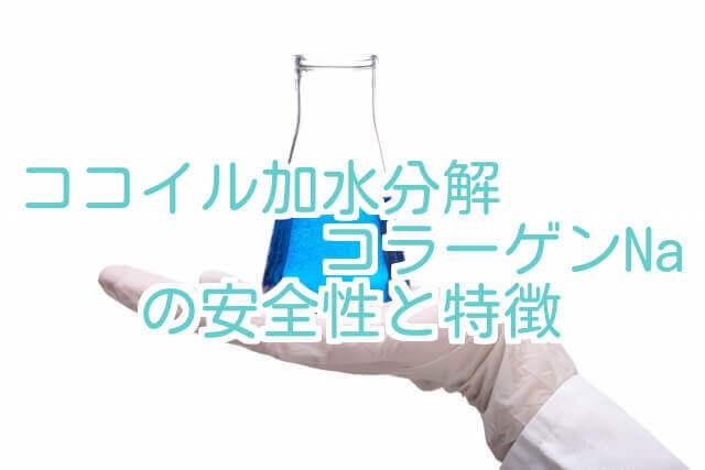 加水分解コラーゲンNaの安全性と特徴と書かれた画像