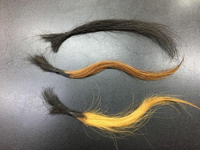 実験に使う3本の毛束の写真