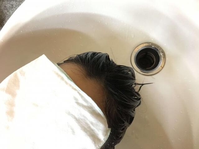 ノーシャンプーを髪の毛に付けてみた状態の写真