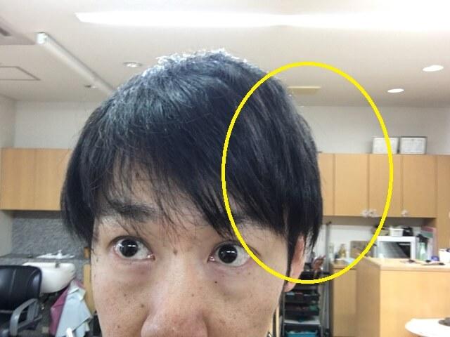左をオーガニックワックスで抑えた髪の毛の写真