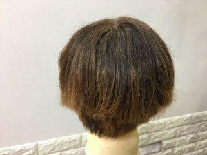 髪の毛を梳かしたショートヘア後ろの写真