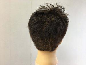 男性のショートヘアの髪型後ろの写真
