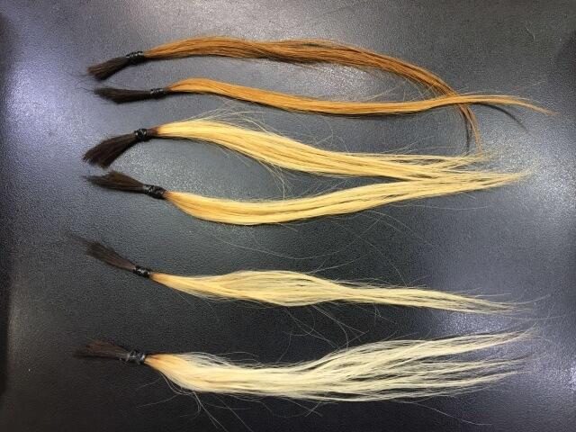 6回までブリーチした髪の毛の写真