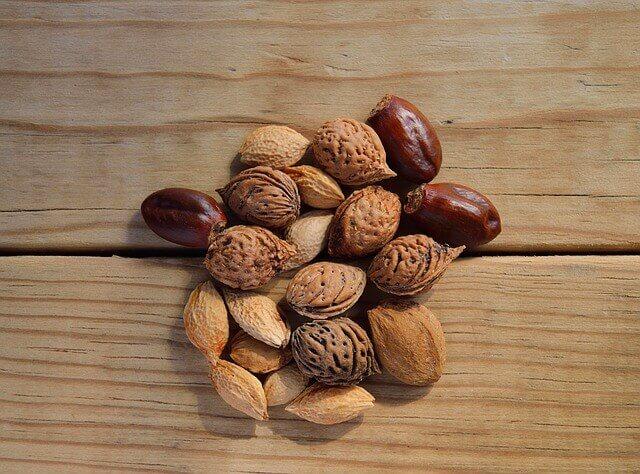 オーガニックの豆の写真