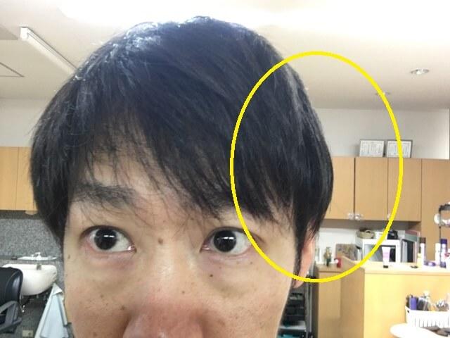 左だけ洗い流さないトリートメントをつけた髪の毛の写真