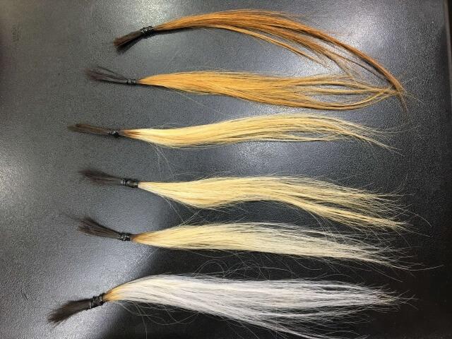 ホワイトニングローションをしたブリーチした髪の毛の写真