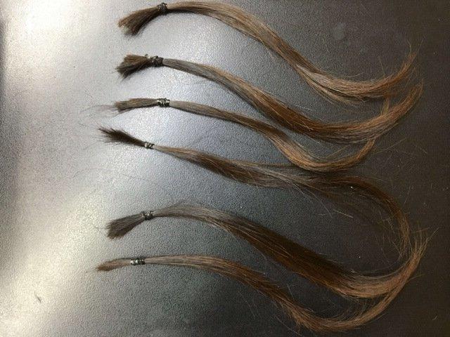 ブリーチ前の6本の毛束黒い背景の写真