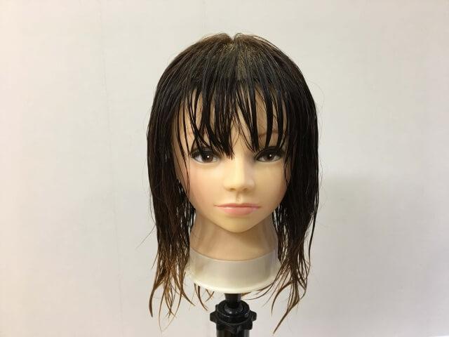 濡らし髪の毛の写真