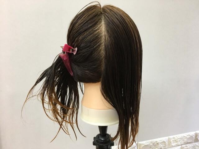比較のために分け取った髪の毛の写真