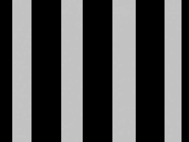 黒髪に灰色の髪のイメージ図