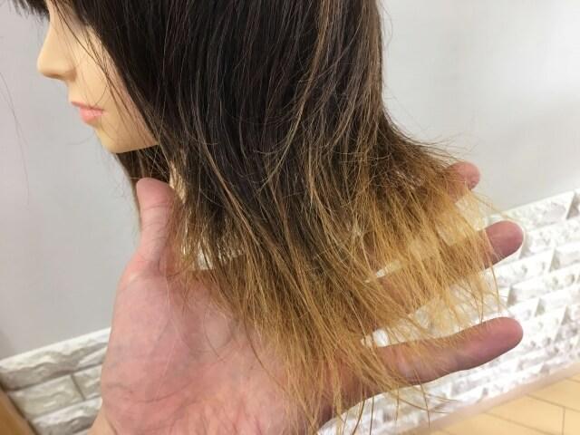 何も付けていない髪の毛の毛先の写真