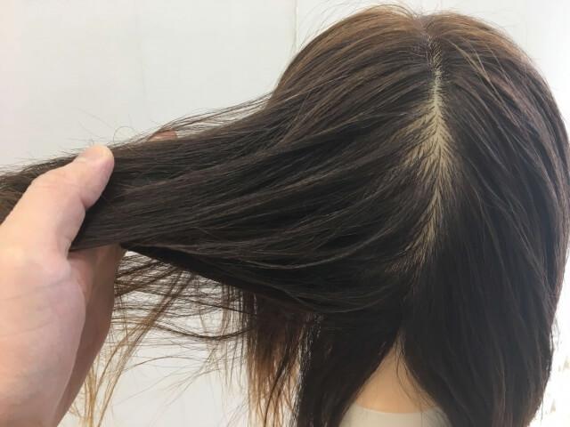 何もついていない髪の毛の指通りの写真