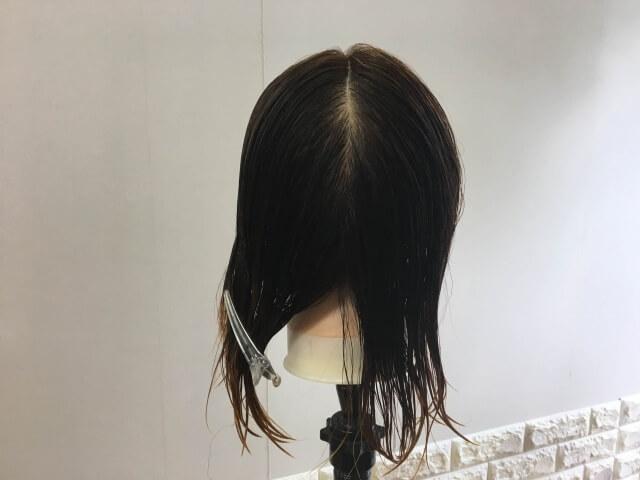 髪の毛半分を分け取った写真