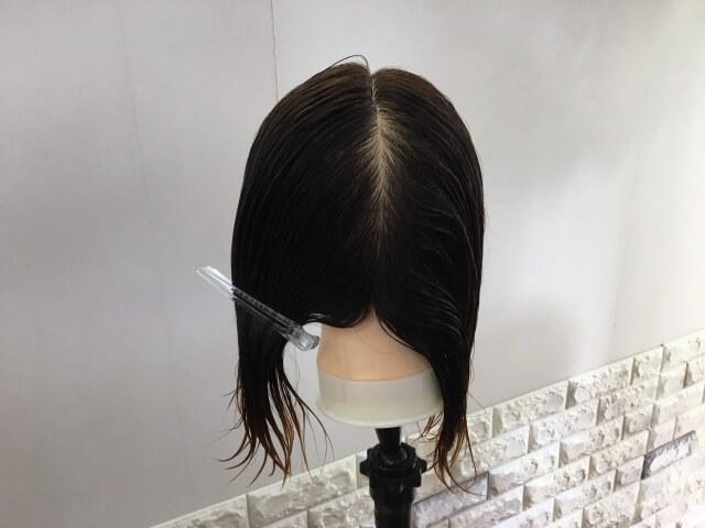 濡らして半分に分けた髪の毛の写真