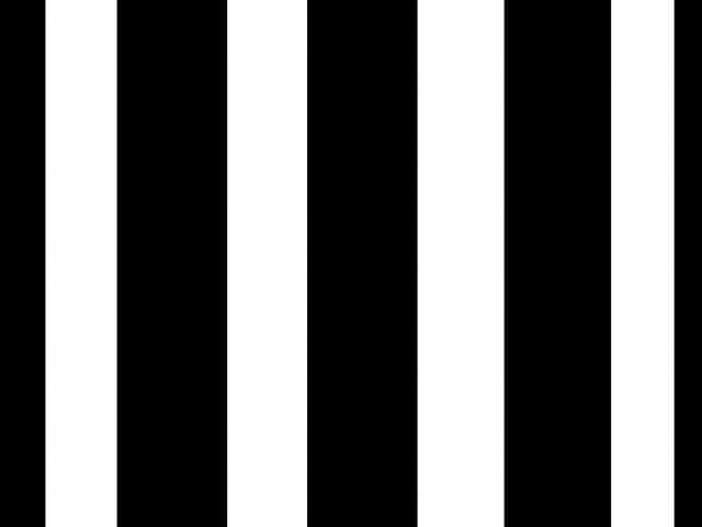 黒髪に白髪のイメージ図