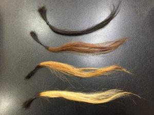 黒髪とブリーチした髪の毛の写真